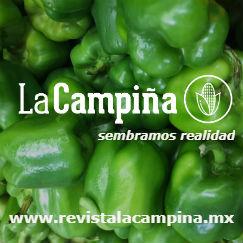 http://revistalacampina.mx/